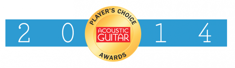 acoustic guitar awards